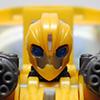 Bumblebee TP Leader Class