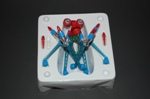 Spider_box_tray_s